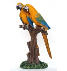 SCARLET MACAW LOVER